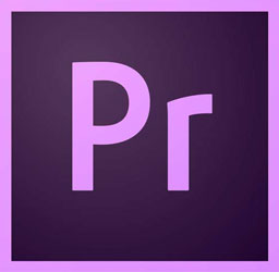 ONLINE: The Introduction to Premiere Pro Course